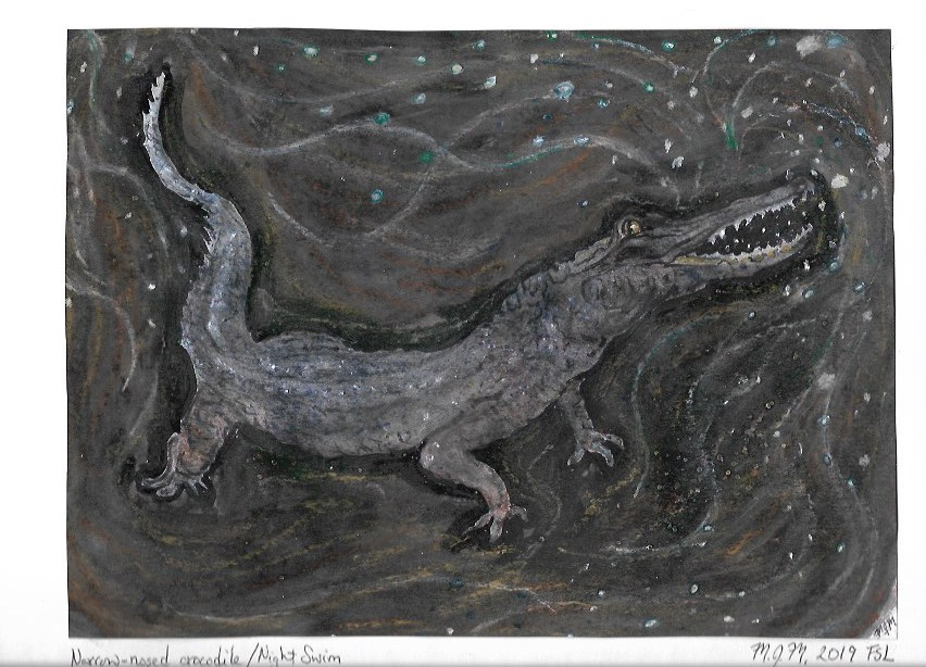 A painting of a narrow-nosed crocodile on a night swim.